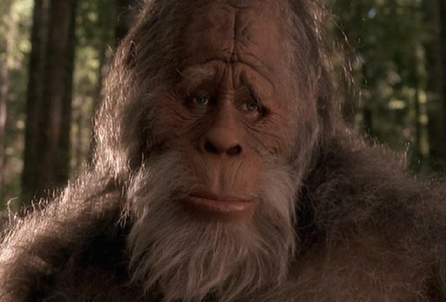 Bigfoot-Existence.jpg