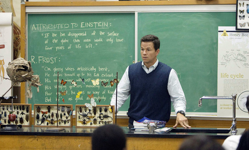 movies-mark-wahlberg-the-happening