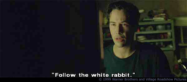 follow-the-white-rabbit